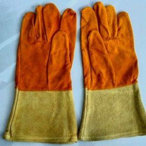 Т-перчатки